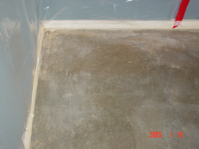 How to clean carpet glue from concrete floor for How to wash concrete floors